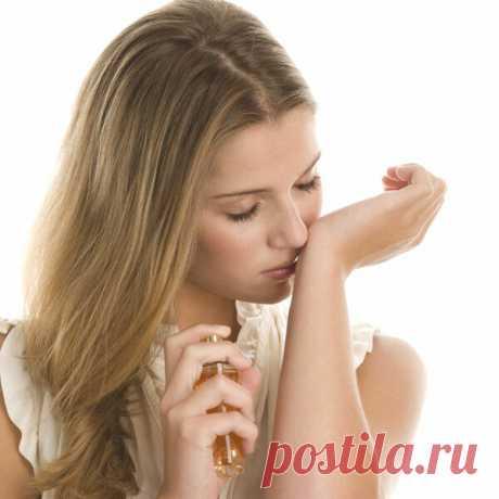 2 аромата из Zara, копирующие известные духи | Простушка | Яндекс Дзен