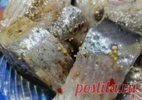 Вкусненькая соленая селёдка в масле 🐟😉 Автор рецепта ivushka.r - Cookpad