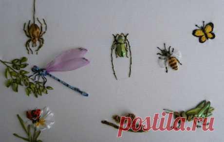 (6) Gallery.ru / Фото #4 - Мои жучки-паучки-букашки.... - pskov-sveta