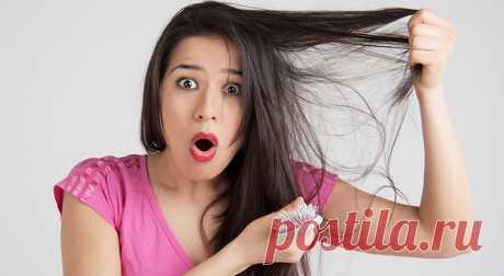 Сильно выпадают волосы? Простой рецепт решит проблему! — ДОМАШНИЕ
