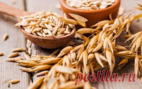 Мощное лекарство в крошечном зернышке пшеницы Пшеница уже месяц как собрана с полей, а значит, можно закупать свежие зерна для... проращивания. Нет, не для озеленения подоконников зеленью! Пророщенные зерна пшеницы являются мощным стимулятором жи...