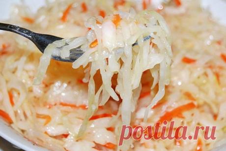 Квашеная капуста – очень вкусные классические рецепты на зиму - Женская страница