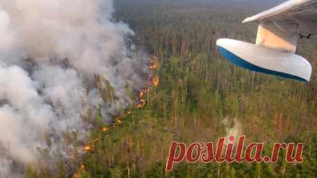Как лесные пожары распространились по Сибири. Карта - Новости Mail.ru