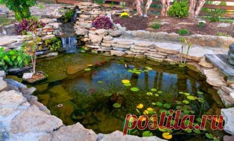 Как весной привести в порядок водоем | Цветы в саду (Усадьба)