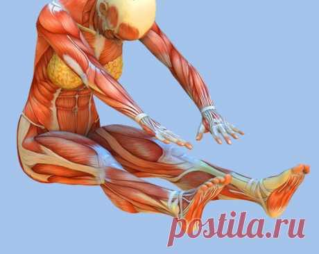 Иммунная гимнастика: 3 упражнения для поддержания здоровья и профилактики вирусных заболеваний – Счастливая женщина