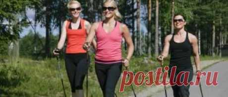 Скандинавская ходьба с палками: польза и вред для пожилых и молодых, техника для похудения. Как правильно подобрать палки по росту.