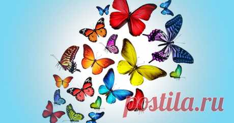 """Делаем светящихся бабочек на стене. Порхающие бабочки выглядят привлекательно. А если они еще и светятся в темноте, это настоящее волшебство. Чтобы сделать декор """"Бабочки"""" выберите светлую стену. Кроме того, недалеко от рисунка люминофорной краской должен …"""