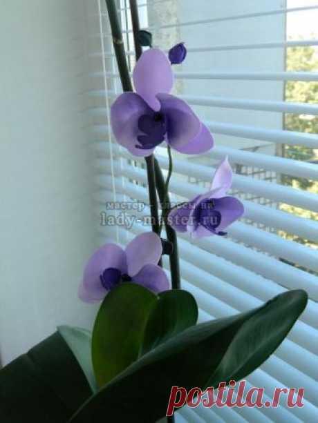 Орхидея из фоамирана - мастер-класс с пошаговым фото + шаблоны