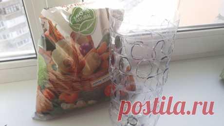 Больше не буду выращивать рассаду томатов в стаканчиках, новый вариант получить ранний урожай, крутой лайфхак   Дача, дом, работа   Яндекс Дзен