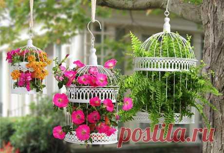 Обустройство подвесного сада: практические рекомендации