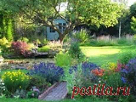 Создадим королевский сад вместе Зачастую садоводам хочется, чтобы их сад отличался от соседского, имел свою индивидуальность. В кино мы всегда восхищаемся красивыми садовыми картинками. Но многие не догадываются, что на своем участке можно создать королевский сад и тем самым удивить друзей и соседей.