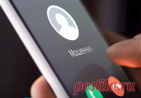 3 фразы по телефону, которые можно услышать только от мошенников | Мобильный проводник | Яндекс Дзен