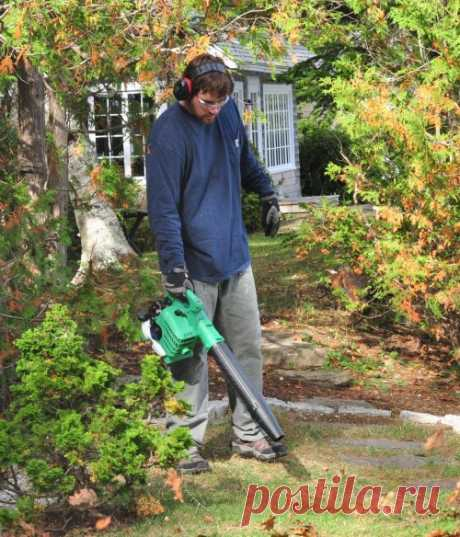 Hitachi Leaf Blower Review — Totally Honest