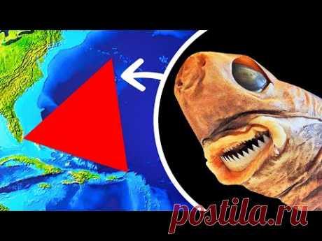 В Бермудском треугольнике обнаружили чудовище, которое проедает дыры в подводных лодках