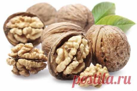 Полезные свойства орехов — Делимся советами