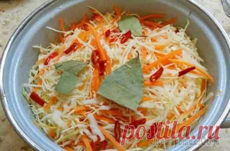 Домашний рецепт очень вкусной хрустящей маринованной капусты на зиму
