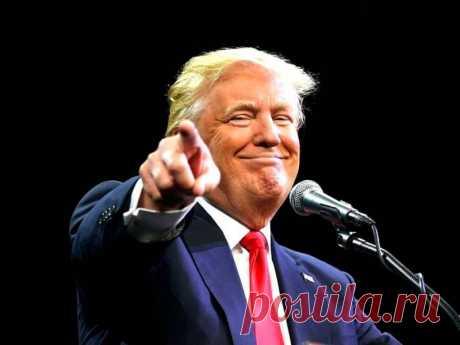 Дональд Трамп и его самые известные коммерческие цитаты - Доска объявлений Краснодарского края   kuban-biznes.ru