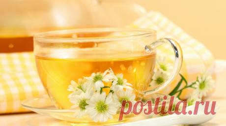 Как потерять много лишних килограмм с обычным зеленым чаем