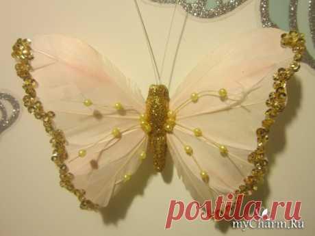 Бабочки - магниты, как живые.: Группа Между нами, девочками