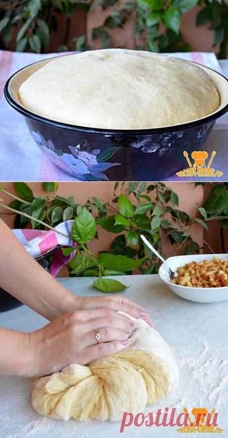 Как приготовить сладкое сдобное дрожжевое тесто для пирожков, пирогов и булочек: рецепт приготовления сдобного дрожжевого теста с фото опарным способом