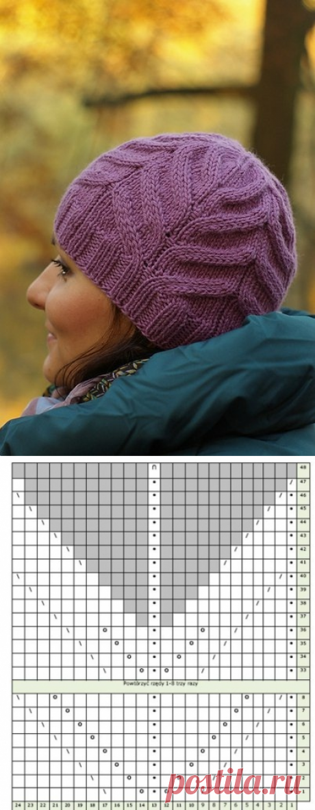 Cap spokes relief pattern. A women's winter cap scheme spokes | I am a Hostess
