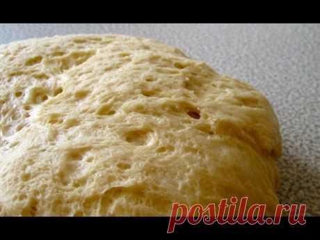 Быстрое тесто для пирожков на сметане рецепт с фото - 1000.menu