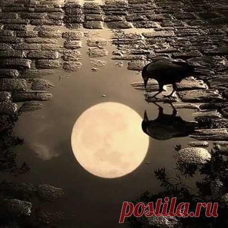 Гороскоп на 21 марта 2019 года - ВОмске