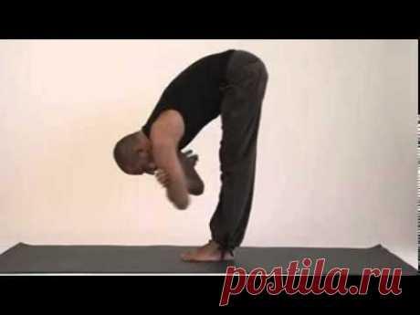 Йога 23: первый комплекс асан (видео)