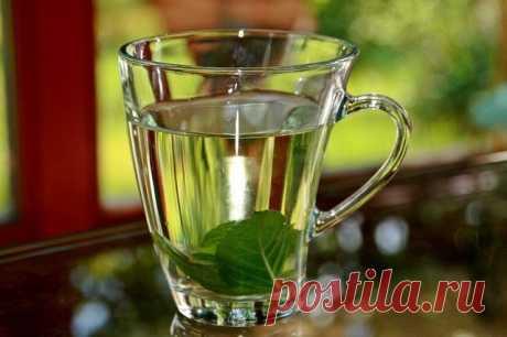 Рецепты успокаивающих чаев — Мегаздоров