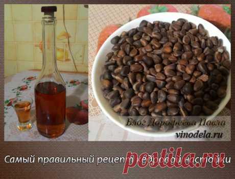 Настойка на кедровых орешках на водке рецепт: вкусно и полезно Немногие знают, что неправильно приготовленная Кедровая настойка может нанести вред здоровью! В этой статье я расскажу, как правильно готовить Кедровку.