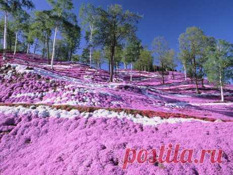 Места на земле, где природа не пожалела красок | Все о туризме и отдыхе