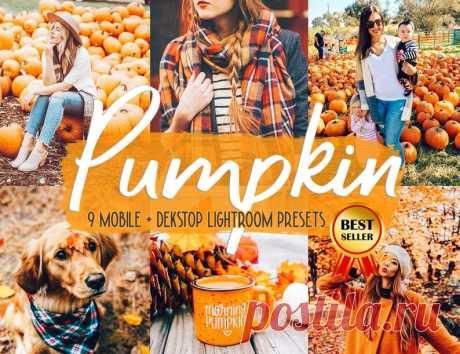 9 Pumpkin presets Mobile presets Fall presets Fall season | Etsy