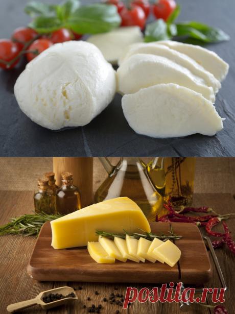 домашний сыр: 3 рецепта