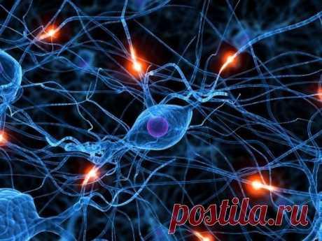 Джо Диспенза: наше сознание влияет на реальность! | RussiaPost.su