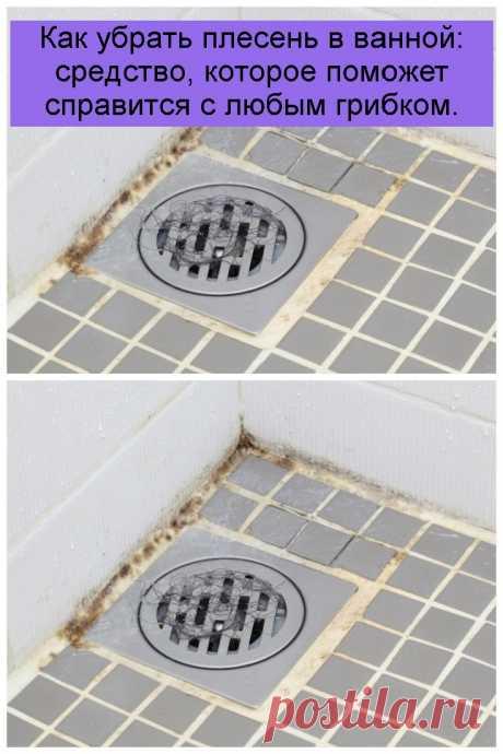 Как убрать плесень в ванной: средство, которое поможет справится с любым грибком.
