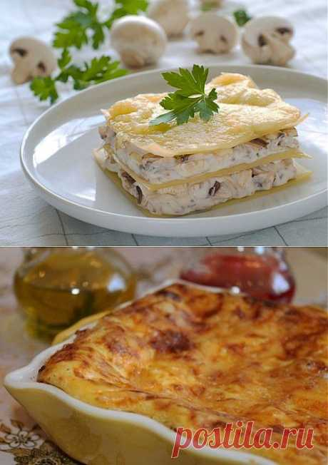 Лазанья с курицей: 5 рецептов вкусного и простого блюда.