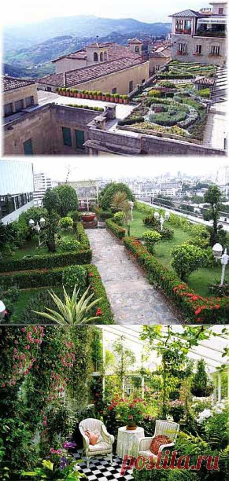 Сад на крыше: устройство зимнего сада