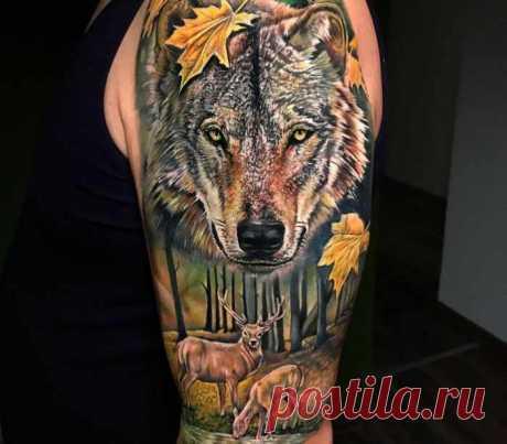 Тату волка - значения и фото