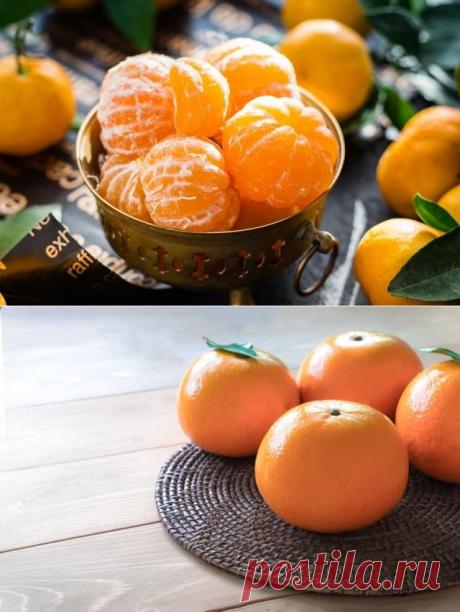 Сколько можно съедать мандаринов без вреда для здоровья - Все обо Всем
