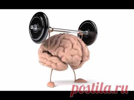 Тренируем мозг, как сохранить память