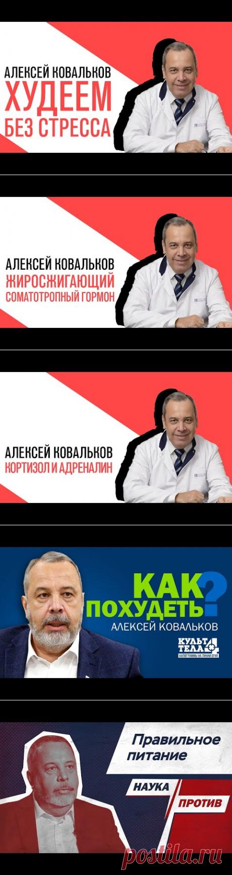 Проект Алексея Ковалькова «Есть или не есть», Михаил Хорс, Как похудеть без стресса - YouTube