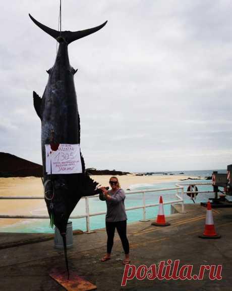 Девушка установила рекорд, поймав крупнейшего за 33 года марлина.