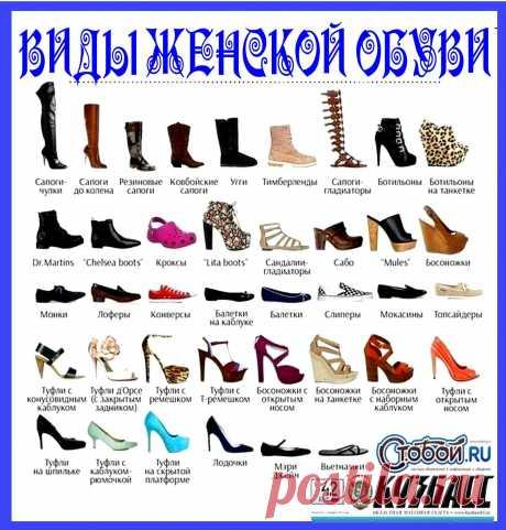 Путеводитель по женской обуви: называем правильно