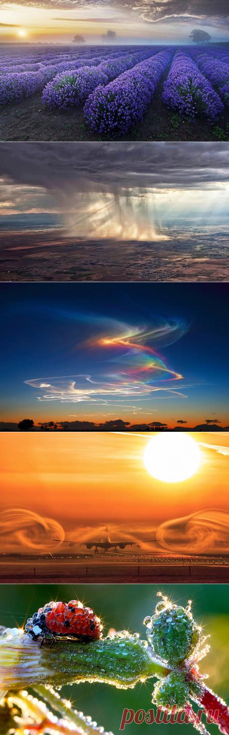 20 кадров фантастически красивых природных явлений — Наука и жизнь