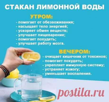 Как действует стакан воды с лимоном утром и вечером — Полезные советы