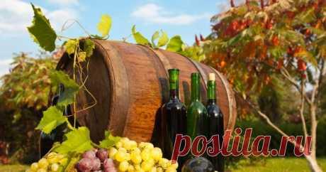 Домашнее вино из винограда: 14 простых рецептов с фото Изготовление вина из винограда – процесс довольно хлопотный, требующий достаточно много времени и соблюдения технологий. Однако эту науку по силам освоить даже начинающим виноделам. О том, как приготовить вино из винограда, читайте в нашей статье.