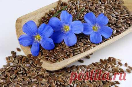 Семя льна и чеснока для уменьшения жира и очищения от паразитов