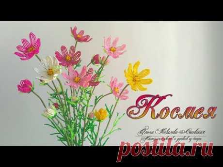 МК / КОСМЕЯ (COSMEA) ИЗ БИСЕРА (часть 1) / Мастер-класс Ольги Ковалевой-Лисовской  / Цветы из бисера