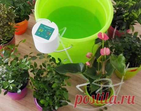 Набор для капельного полива домашних растений с таймером, цена 2000 руб., купить в Санкт-Петербурге — Tiu.ru (ID#279789872)