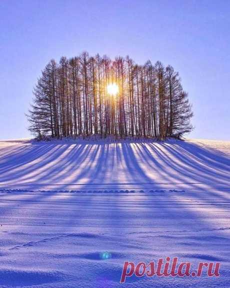 Зимняя красота ❄️💙💜